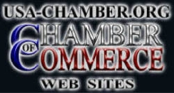 New York USA Chamber.Org logo